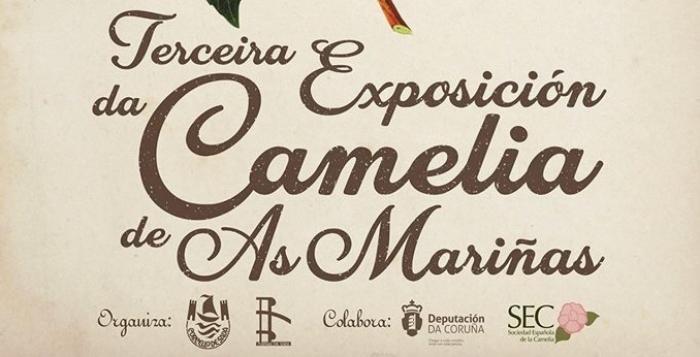 Sada celebra en marzo a III Exposición da Camelia de As Mariñas